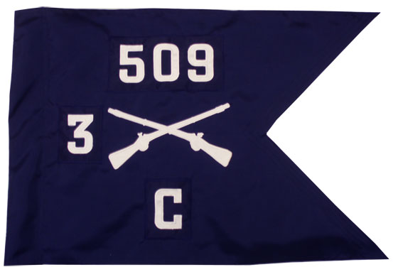 "20""x27.5"" Infantry Guidon"