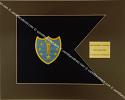Army Framed Guidon Style (Medium) #2