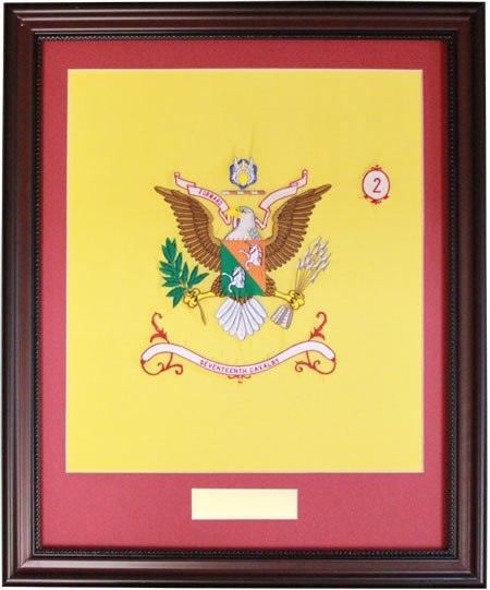Framed 17th Cavalry BN Colors