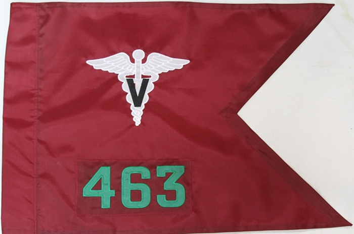 "20""x27.5"" Single Veterinary Guidon"