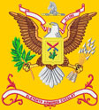 11th Armor Battalion Colors