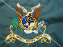 101st Special Troops Battalion Colors