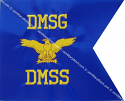 "8""x10"" Air Force Guidons (Single-sided)"